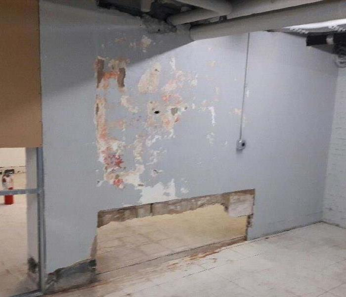 Mold in a Business Before