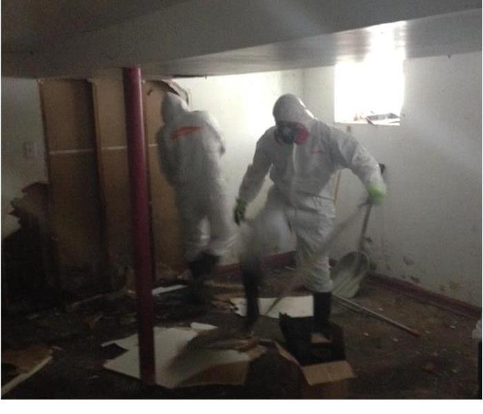 Storm Damage Mopping Up Mold After a Flood